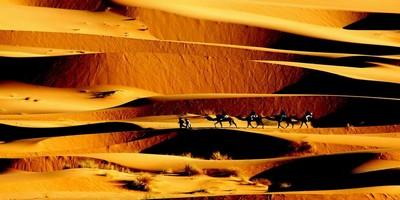 viaje de Marrakech al desierto